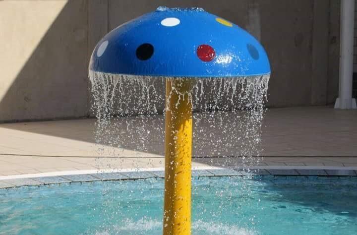 champignon spa piscine